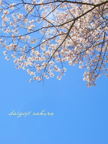 Daigoji4_2